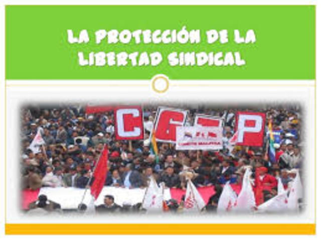Derecho de Sindicalización