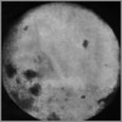 New Target: First On The Moon