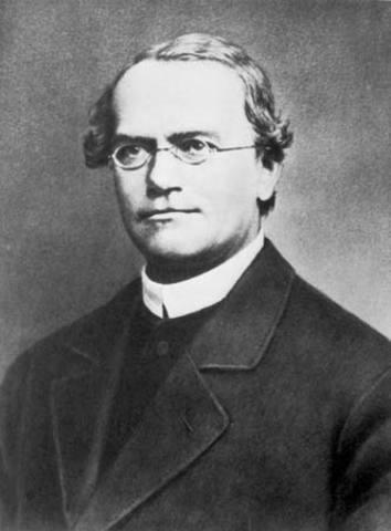 Gregor Mendel's discoveries start the science of genetics