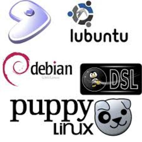 Se mantiene en el mercado ahora como Linux Mint  y otras distribuciones.