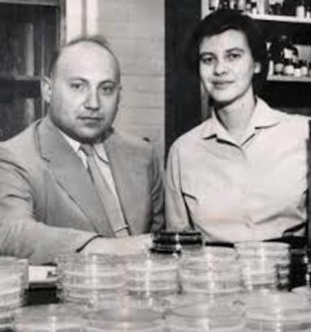 Norton David Zinder y Joshua Lederberg