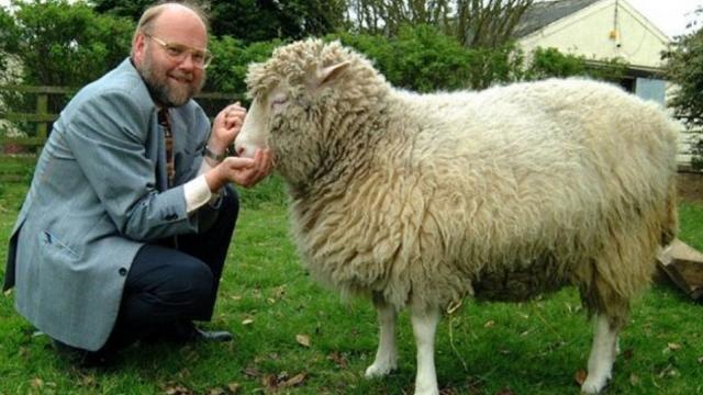 """Clonación de la oveja """"Dolly"""""""