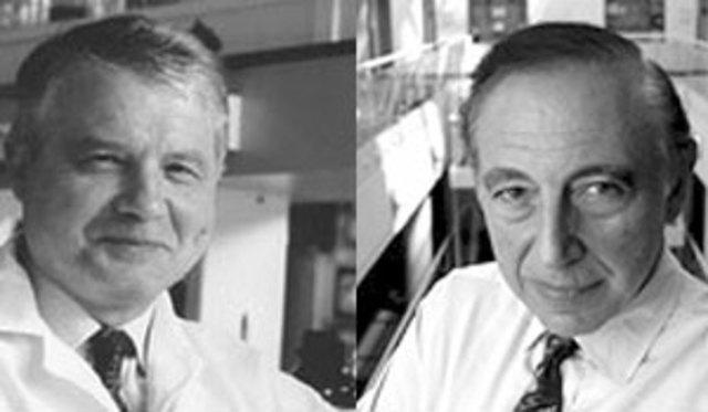 Robert Charles Gallo Y Luc Montagnier.