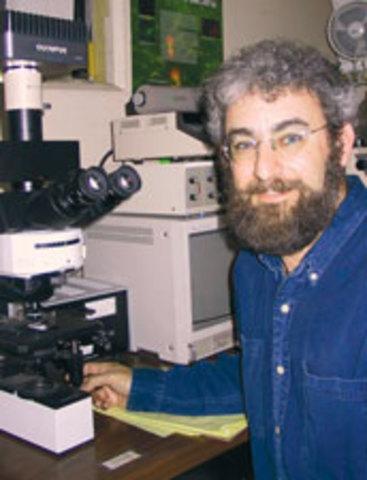 Jed Fuhrman y Edward DeLong. descubrimiento arqueas marinas