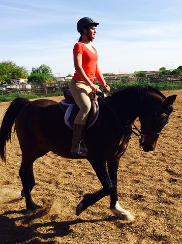 Mi caballo perfecto