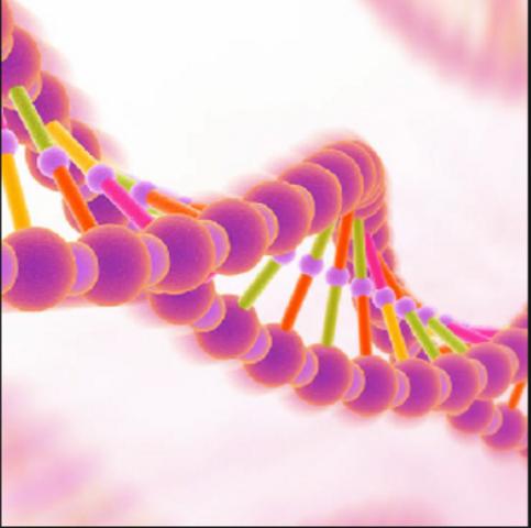 Oswald Avery, Colin MacLeod, y Maclyn McCarty: ADN MATERIAL GENÁTICO DE TDO SER VIVIO