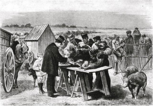 Rhin, Pasteur, Roch y Chamberland produjeron la primera vacuna contra el ántrax (carbunco)