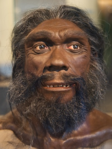 Homo Sapiens Heidelbergensis  250.000 anys