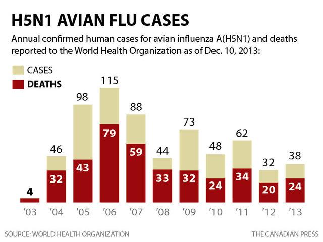 Avian Flu Vaccine