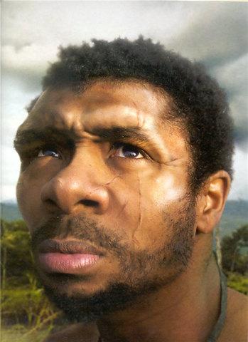 Homo Sapiens Sapiens   40.000 anys