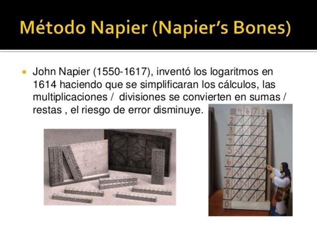BASTONCILLO DE NAPIER