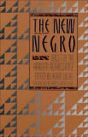 20s AA ID- The New Negro: An Interpretation