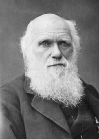 """Charles Darwin and son Francis publish the book """"The Power of Movement in Plants"""""""