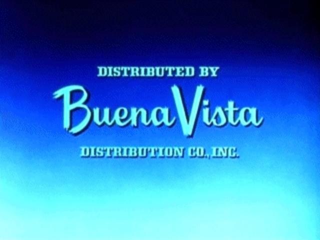 WD - Distribuidora Buena Vista