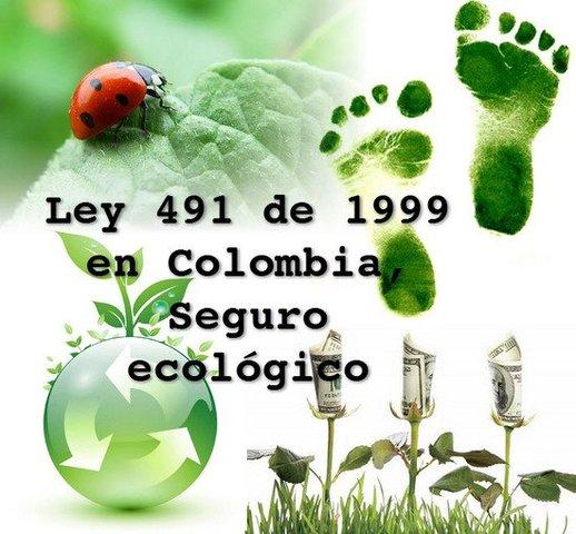 Ley 491 de 1999