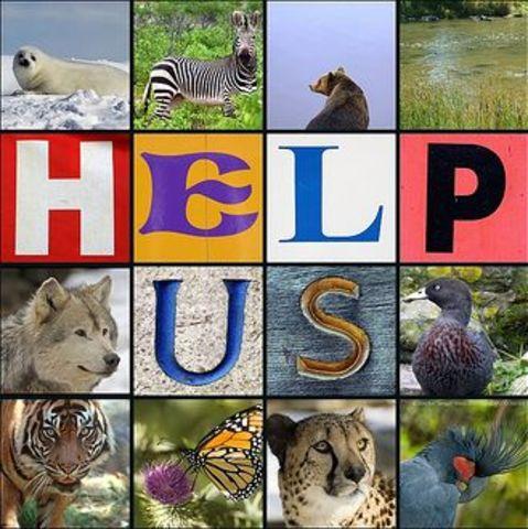 Endangerd Species Act