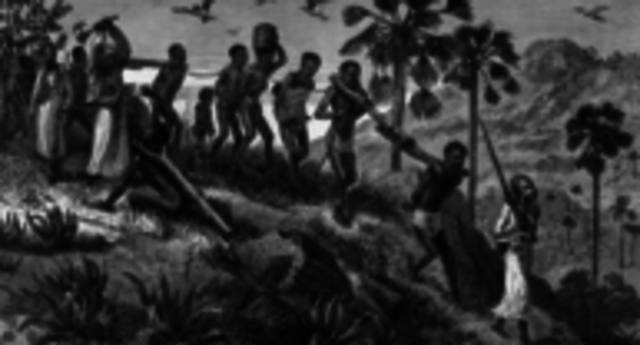 First African Slaves Sold