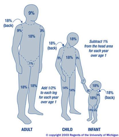 Body Image began to change