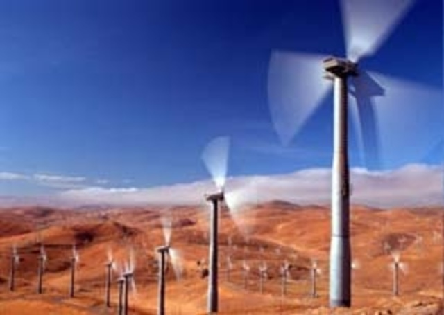 Construction Begins on the World's Largest Wind Farm in California's Altamont Pass; Bird Deaths from Wind Turbines Number in the Thousands