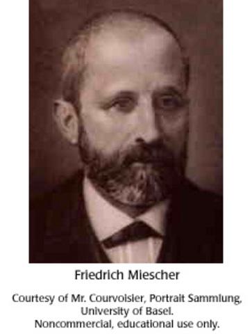 """Friedrich Miescher and """"nuclein"""""""
