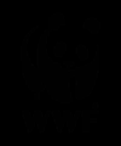 День Рождения WWF