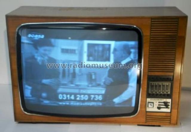 El uso de la televisión electrónica.