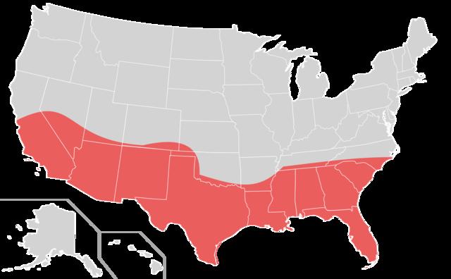Rust Belt and Sun Belt (migration)
