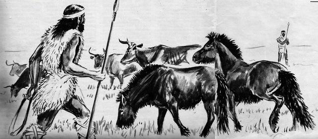 3000 Desarrollo de la ganadería en la Europa occidental.