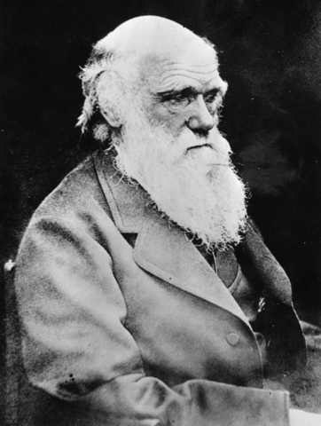 Charles Darwin. Teoria de la evolución