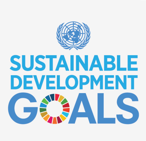 First global sustainable development strategy