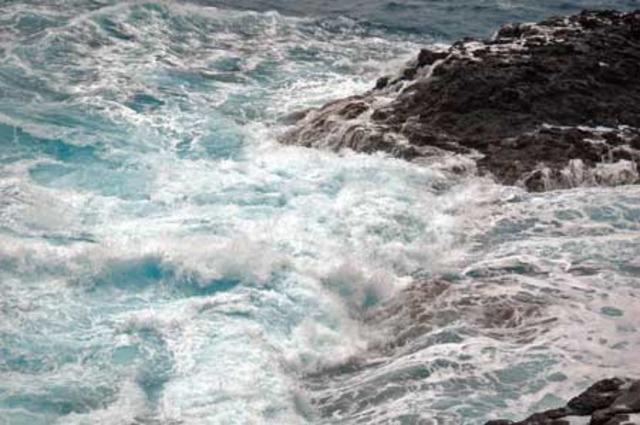 Se registraron mareas negras en la bahía de Banty