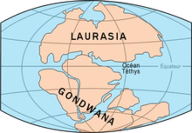 TRIÁSICO (desde hace 252 m.a. hasta hace 201 m.a.)