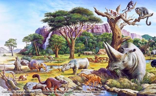PALEÓGENO (desde hace 66 m.a. hasta hace 23 m.a.)