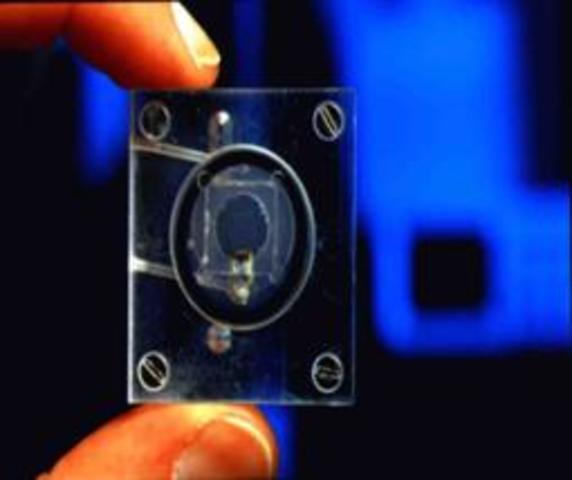 Motor a nanoescala