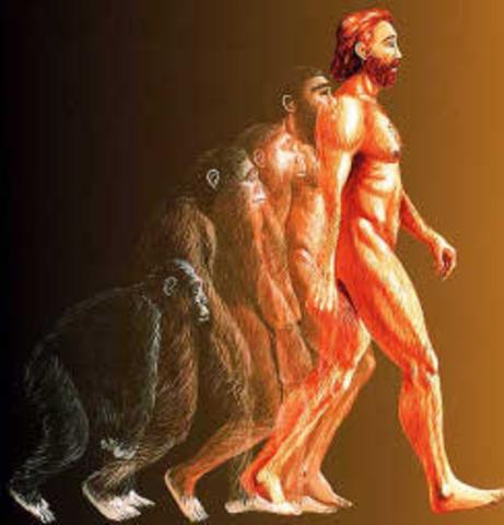 Школа эволюционной генетики