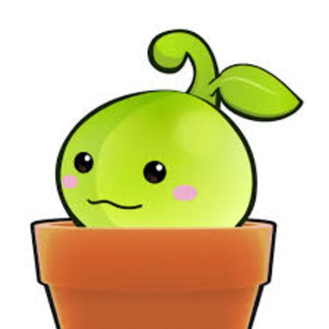 Week 4: Im-PLANT-ation