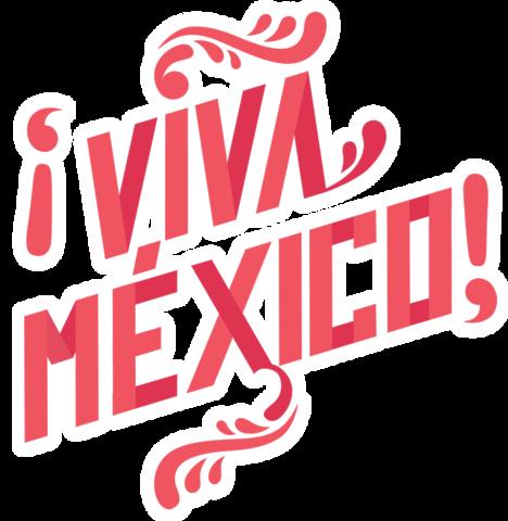 Visepresidente de AIESEC en México