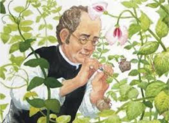 El redescubrimiento del trabajo de Mendel