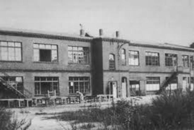 Bauhaus Berlin begins