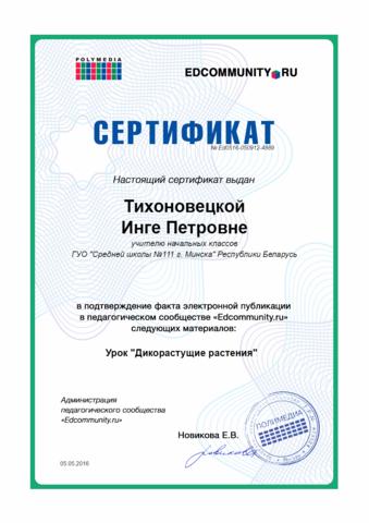 EDCOMMUNITY.RU Электронная публикация на образовательном портале