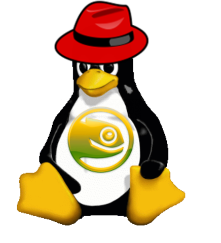 Rd Hat y Novell con Linux