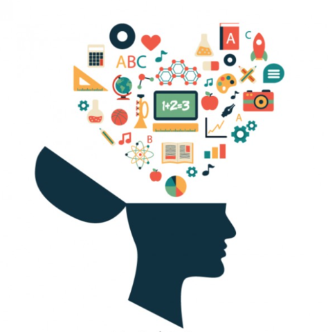 Psicología del Aprendizaje, enseñanza programada