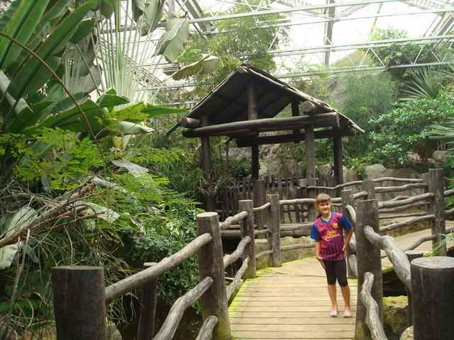 Zoo d'Alemanya