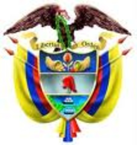 Constitucion Nacional de 1991