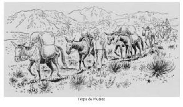 Passagem das tropas de mulas