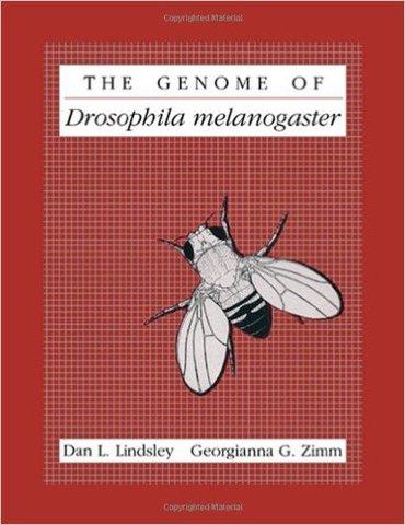 Genome of Drosophila melanogaster registered