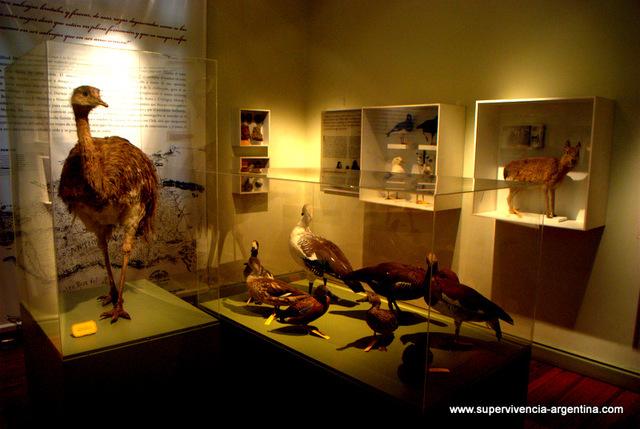 Visitaremos el museo El Hombre Y El Mar