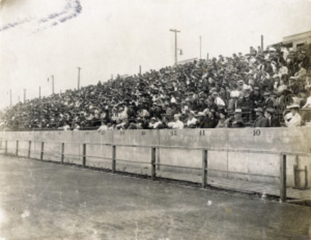 1904 Summer Olympics in St Louis