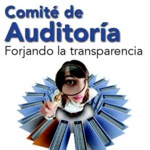 Comités de Auditoría