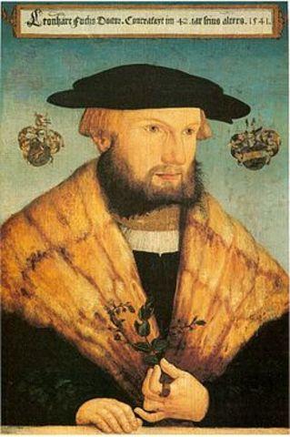 Leonardo Fuchs